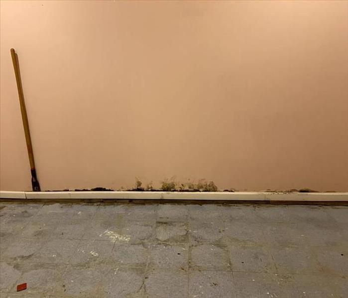 Pink Room with brown water damage along baseboard and bottom of wall.