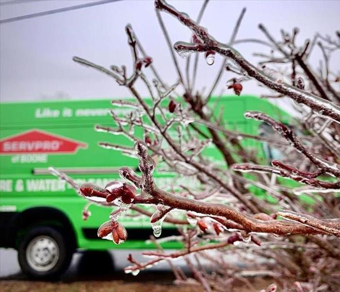 In foreground is an ice covered bush. In background is the green SERVPRO van.